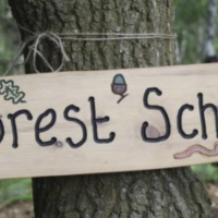 Outdoor First Aid for Forest School Leaders 23 & 24 January 2021